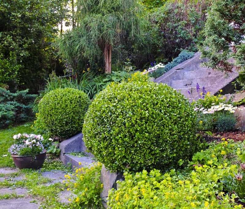 tidy garden_
