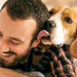 Tiendas en California sólo venderán perros y gatos rescatados