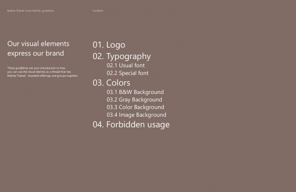 Visual identity guide-page-003