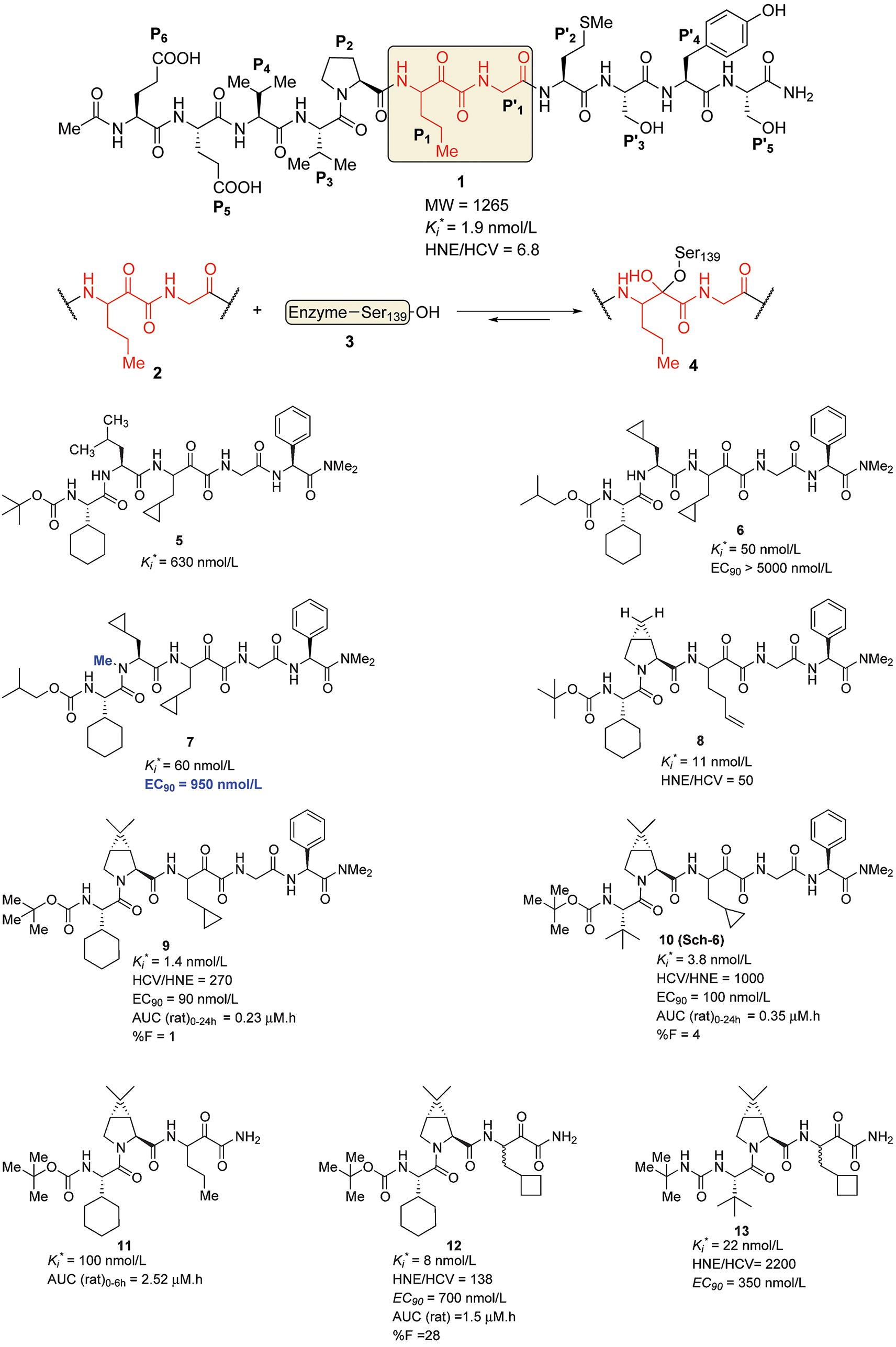 The Discovery And Development Of Boceprevir Amp A Novel First Amp Generation Inhibitor Of The