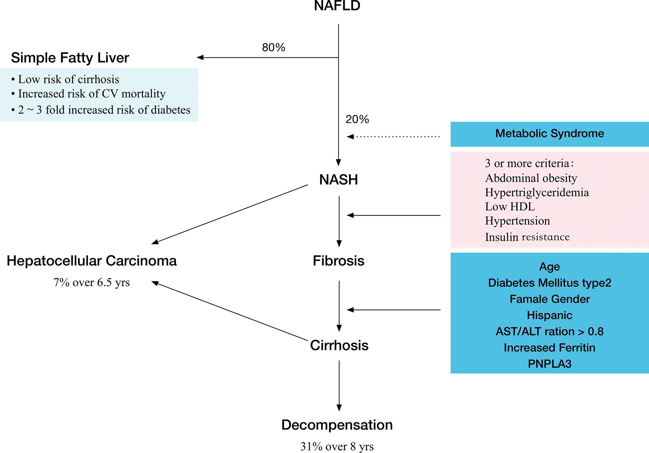 Natural History Of Diabetes Mellitus Type 2
