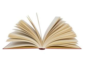 custom essay  publishing insider