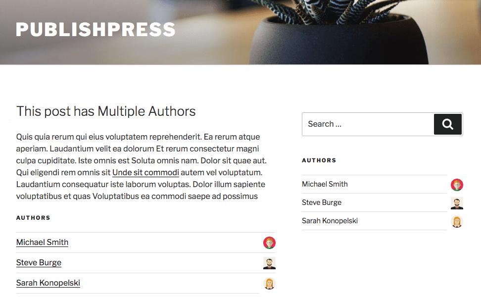 Multiple Authors Layout