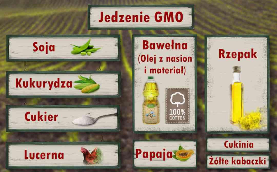 Sekretne składniki-Jedzenie GMO