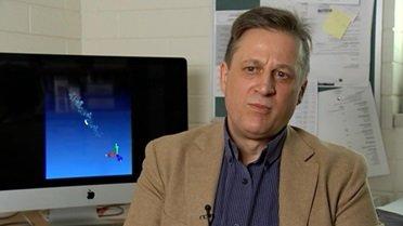 Prof. Nikolai Petrovsky