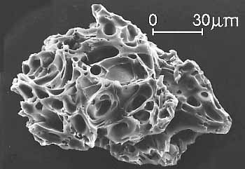 image from scanning electron microscope showing ash particle having the texture of lacy Swiss cheese