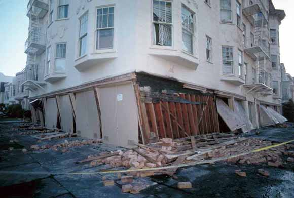 Putting Down Roots In Earthquake CountryYour Handbook For