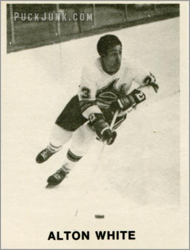 Review: 1972-73 Los Angeles Sharks