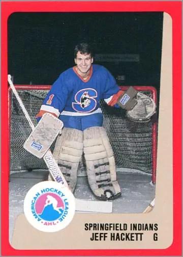 1988-89 ProCards AHL/IHL - Jeff Hackett
