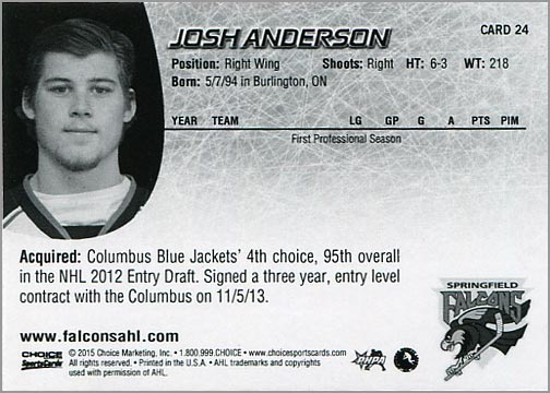 2014-15 Springfield Falcons #24 - Josh Anderson (back)