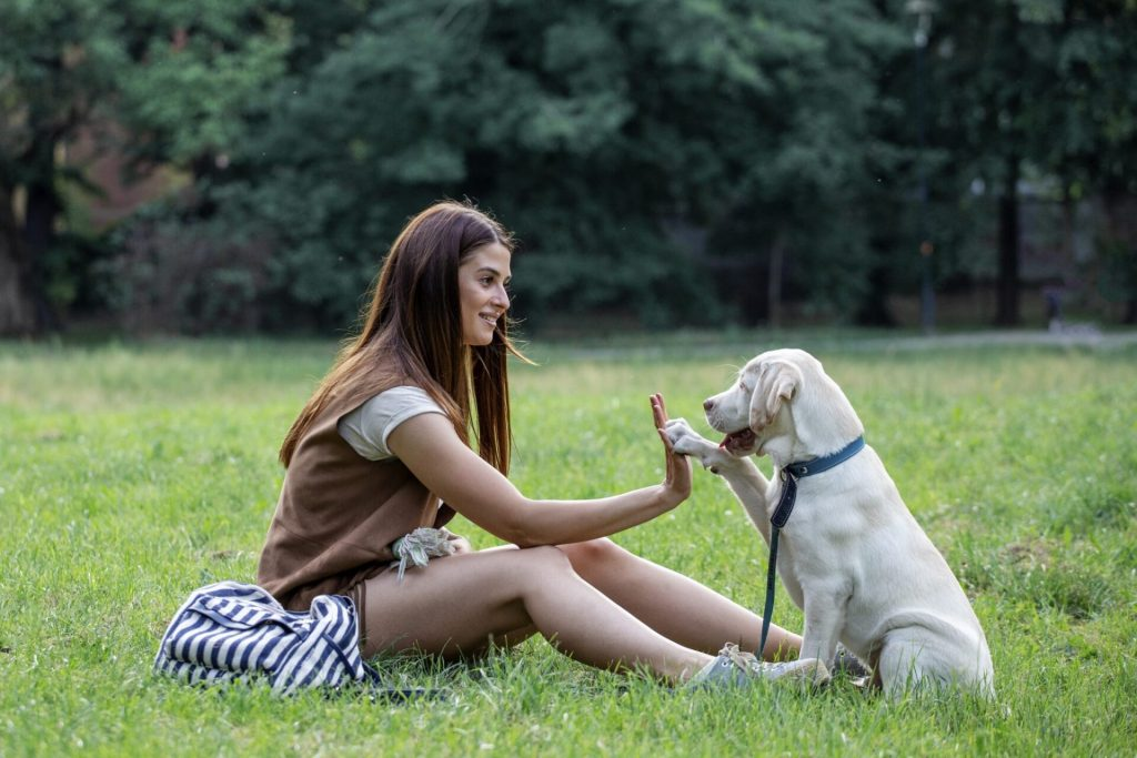 girl`s best friend photo by z.pucarevic pucko