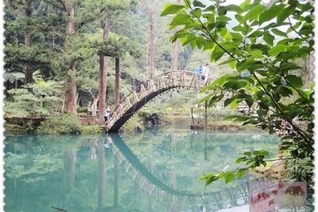 【遊記-南投】鹿谷森呼吸《溪頭自然教育園區》大學池孟宗竹拱橋