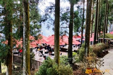 【遊記-新竹】五峰高海拔雲海上的景觀住宿餐廳《山上人家森林農場》民宿/露營/櫻花/森林咖啡