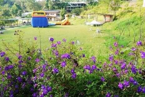 【遊記-新竹】北埔親子休閒園地《彩紅部落玫瑰花農場》試營運期間免費入園