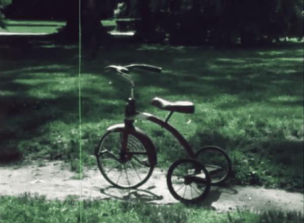 Stray Fossa - 'Orange Days' video