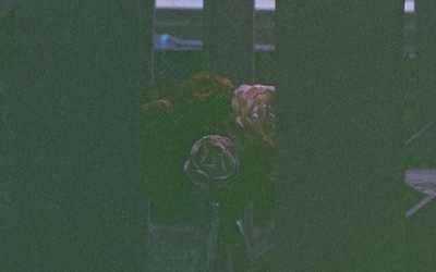 Tide Rider releases 'Golden Eyes' (single)