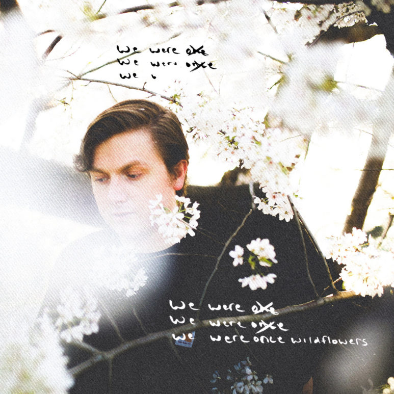 Stevie Nel - We Were Once Wildflowers