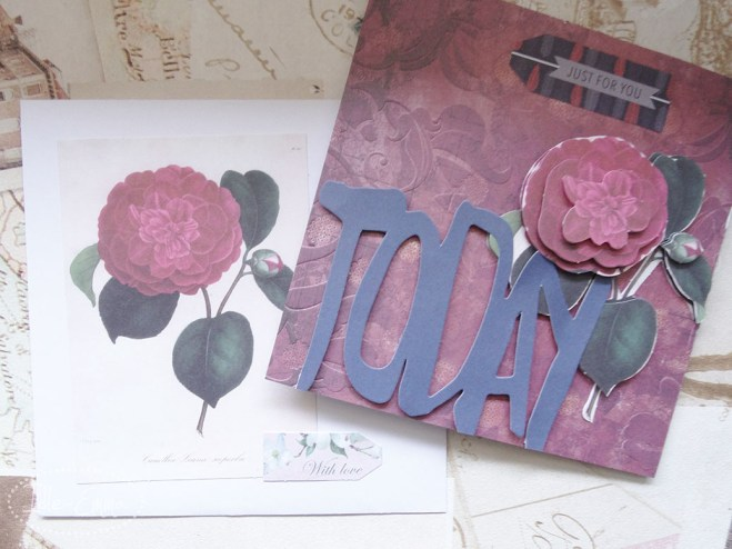 Photo - May Card Making (3)