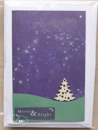 photo-christmas-cards-2016-12