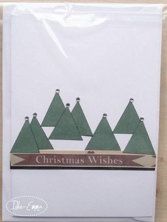 photo-christmas-cards-2016-43