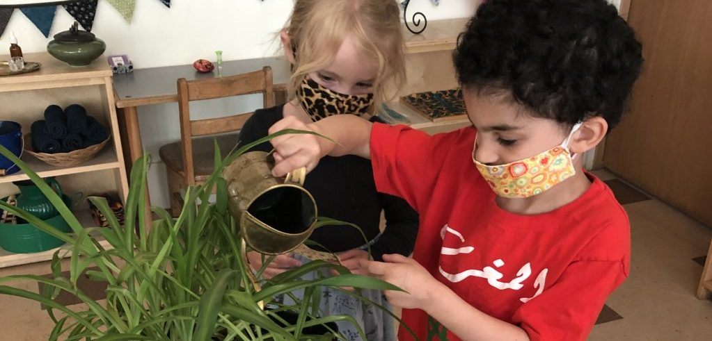 A four year old uses a brass watering can to care for a plant. Another child watches intently