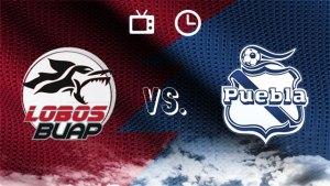 Lobos BUAP vs. Puebla en vivo: Cómo y dónde ver   Jornada 12 Liga MX Clausura 2019