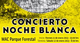 """Concierto """"Noche Blanca"""" 11 al 12 Enero 2013"""