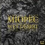 pn160 Wet Desert