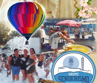 Cartel Fiestas del Campo de Guardamar 2018