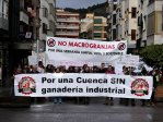 Pueblos Vivos Cuenca considera urgente una moratoria a la ganadería industrial