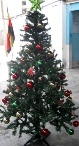 Weihnachtsbaum 2012