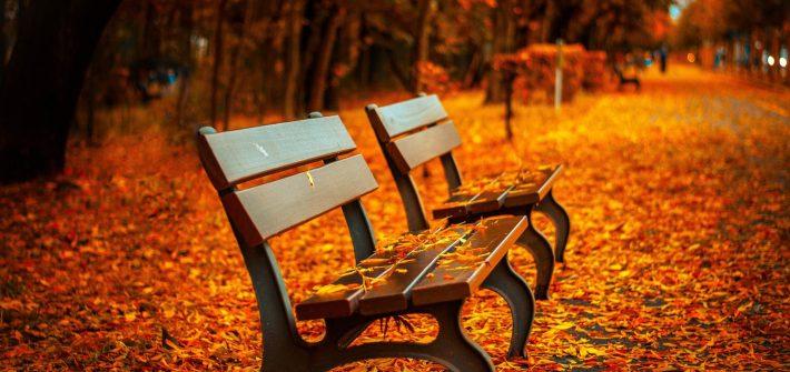 tardes de otoño, libros, narrativa, ebooks, puentedemando.es