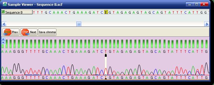 genoma-1.png