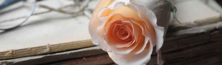 light love table gift