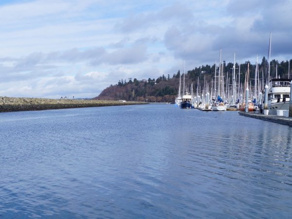 Shilshole Bay Marina.
