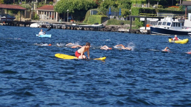 Lifeguards paddle alongside swimmers at the annual Fat Salmon Swim in Lake Washington.