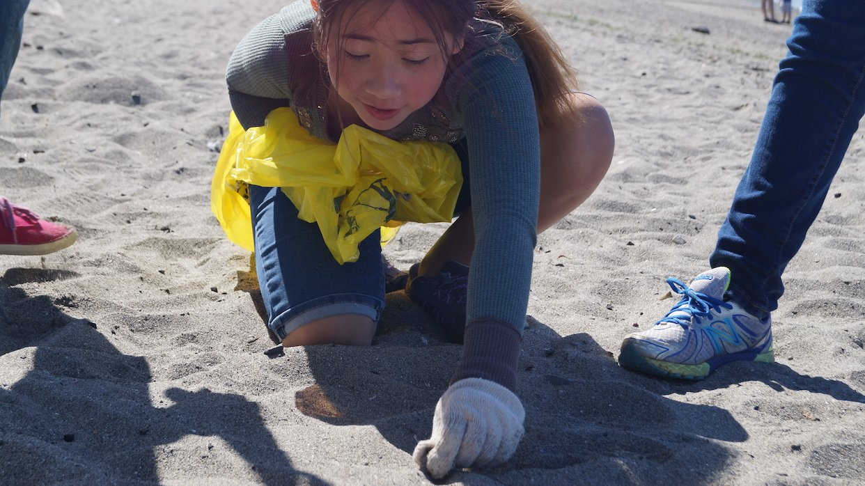 A volunteer cleans up trash from the Golden Gardens beach.