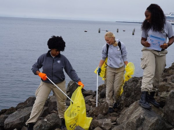 Volunteers clean the shoreline during the International Coastal Cleanup in September.