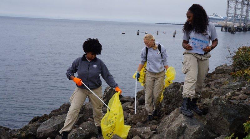 Volunteers clean the shoreline during the International Coastal Cleanup in September.