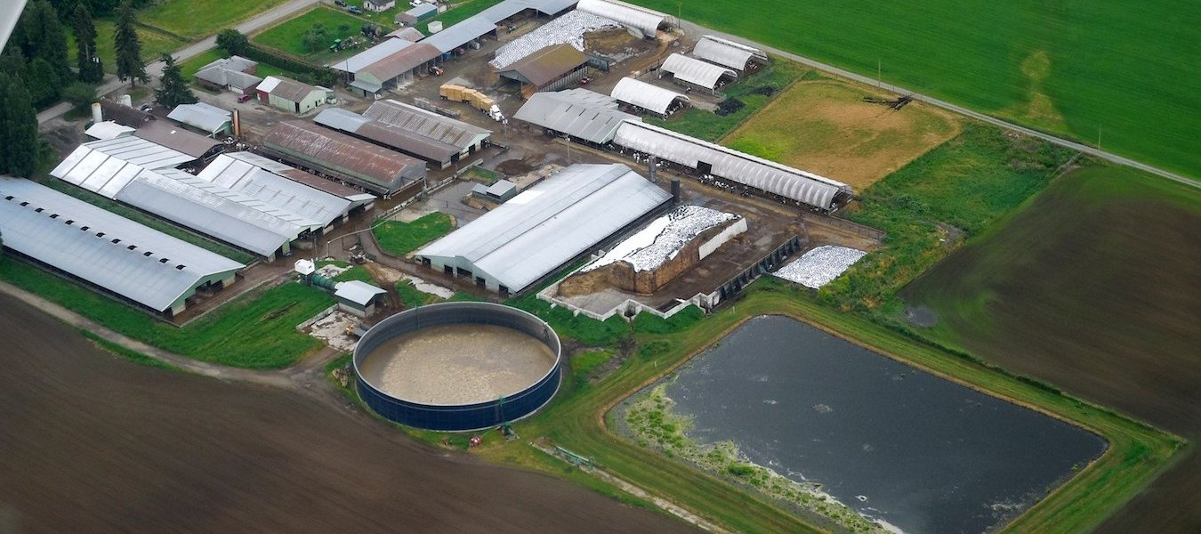 An aerial view of manure lagoons used to hold excess waste.