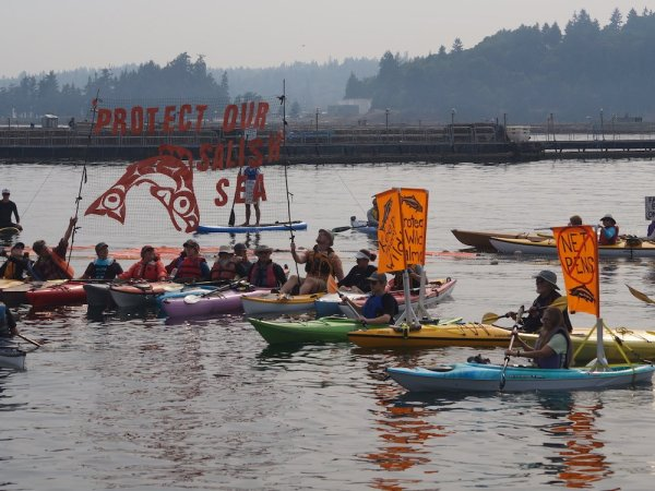 Kayakers hold signs protesting Atlantic Salmon net pens at a flotilla protest in Rich Passage.