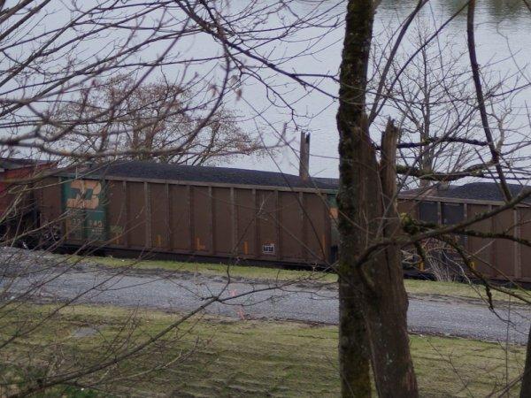 A coal train passes by the water near Everett, Washington.