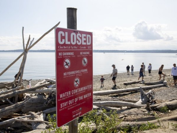 Signs warning about water contamination are posted at Discovery Park beach, near the West Point Lighthouse, in Seattle (Erika Schultz / The Seattle Times)
