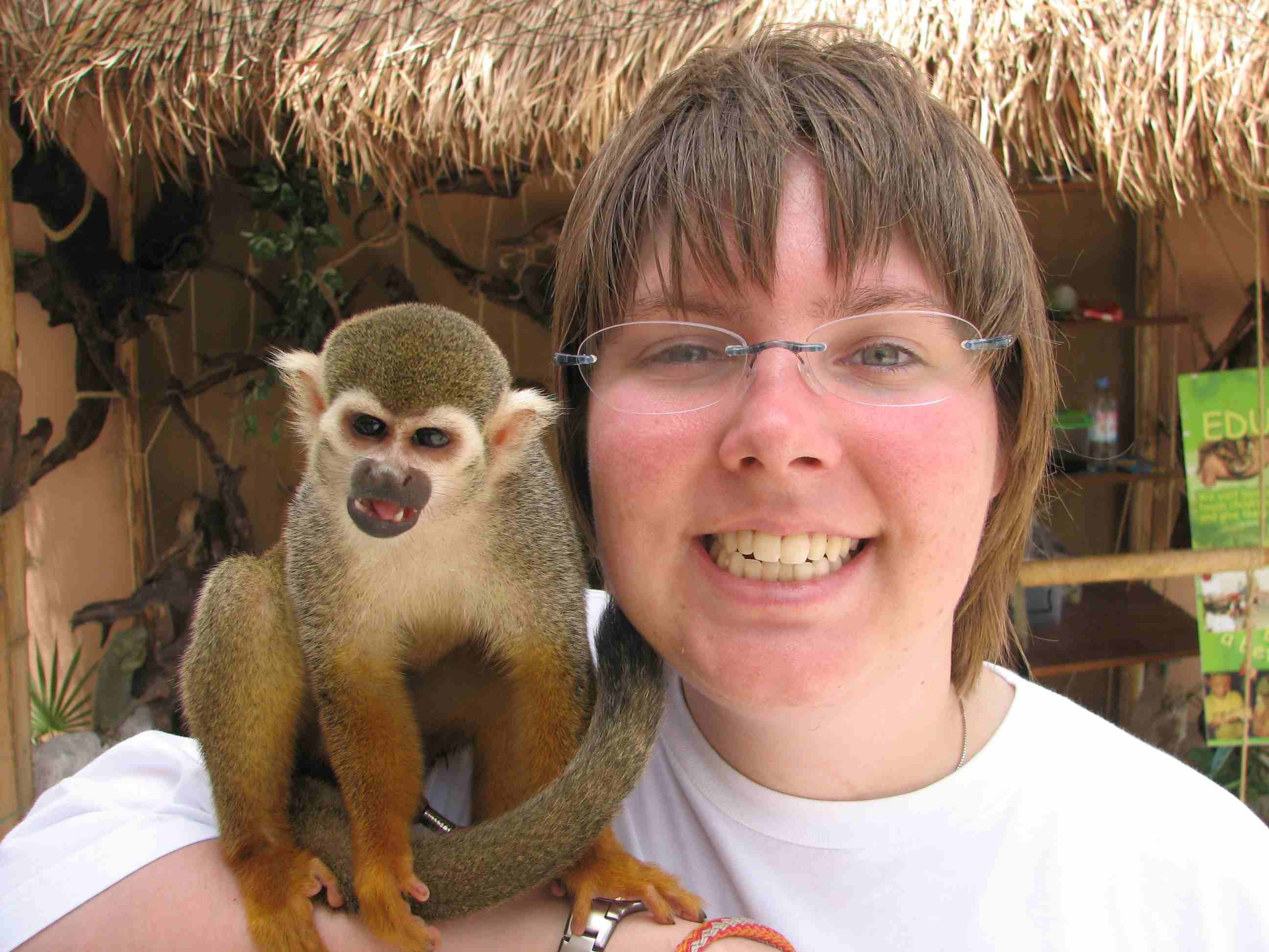the monkey doesn't want any more freakin pictures