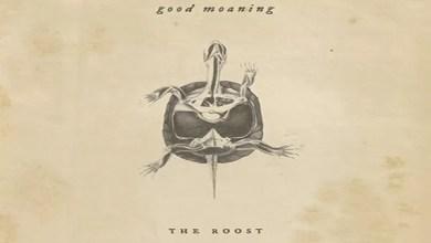 """Photo of [Nuovo EP] I GOOD MOANING presentano il loro secondo LP """"The Roost"""" uscito a febbraio 2019"""