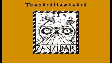 """Photo of """"Zanzibar"""" il nuovo singolo dell'enigmatica artista pugliese TUASORELLAMINORE"""
