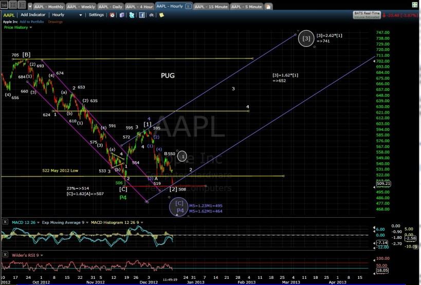 PUG AAPL 60-min chart EOD 12-14-12