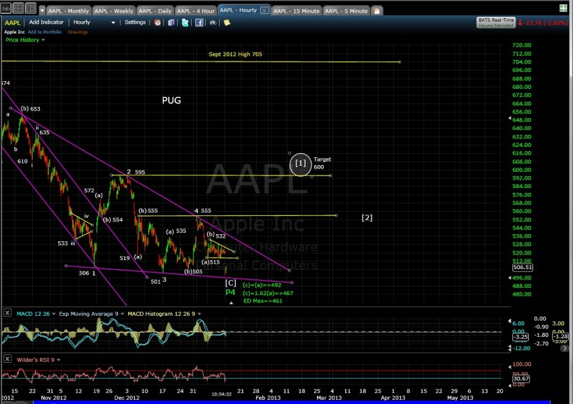 PUG SP-AAPL 60-min mid-day 1-14-13