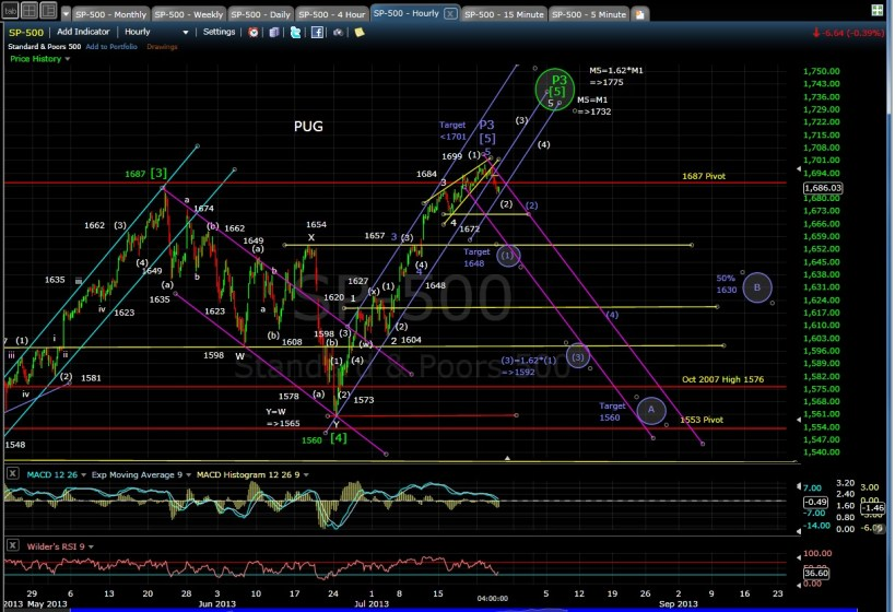 PUG SP-500 60-min chart EOD 7-24-13