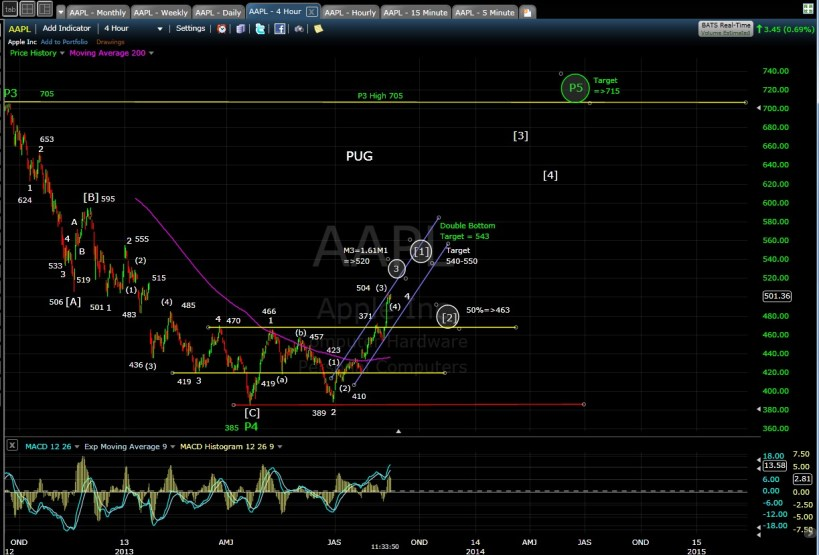 PUG AAPL 4-hr chart MD 8-16-13